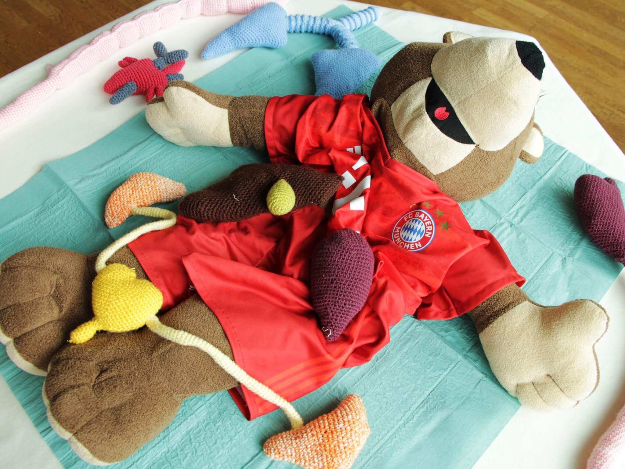 Der Organ-Bär: Alle Organe sind von einer Helferin gehäkelt und sind - im Verhältnis - in Lebensgöße dargestellt.